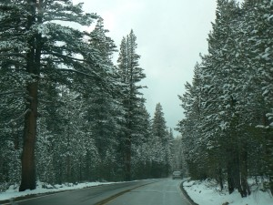 Onderweg in/naar Yosemite bij de Tioga pass